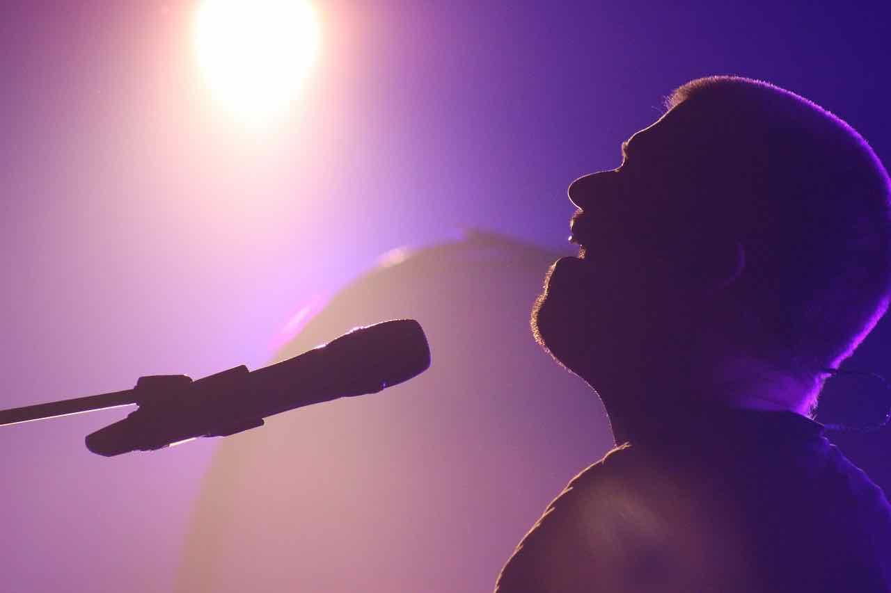 artist, perform, music, entertainment, mic,stage